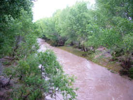San Pedro Riparian Conservation Area